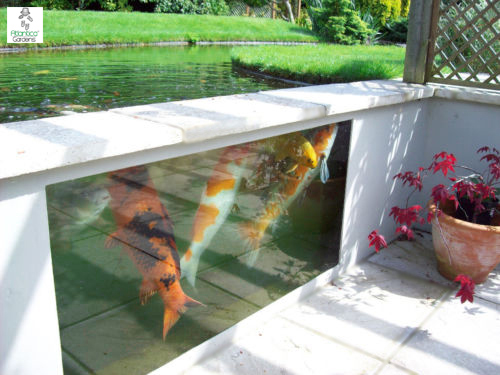Teichfenster atlantica gardens for Koi pond window