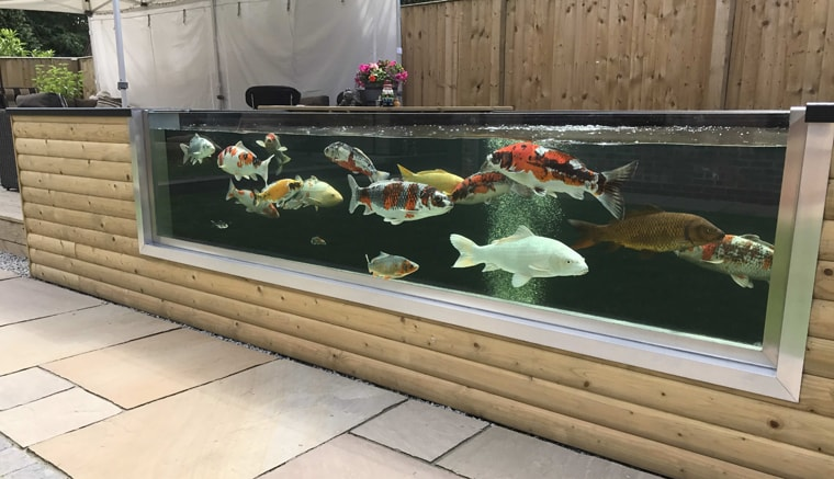 Koi pond window frames and glass atlantica gardens for Fish ponds sydney