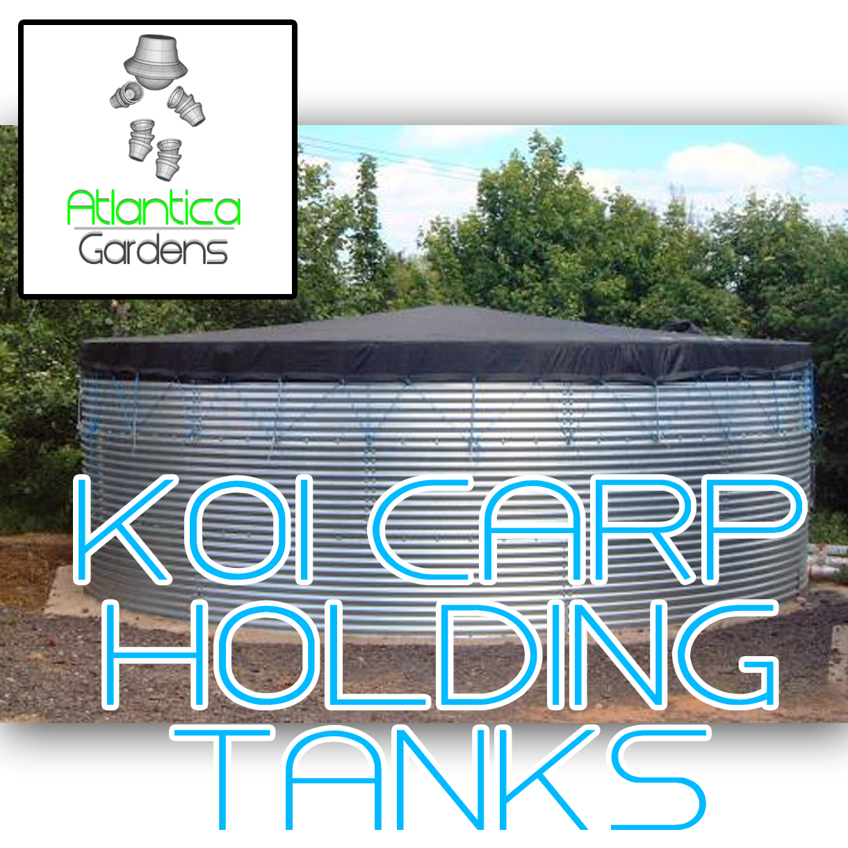 fish hold tank - Large and steel