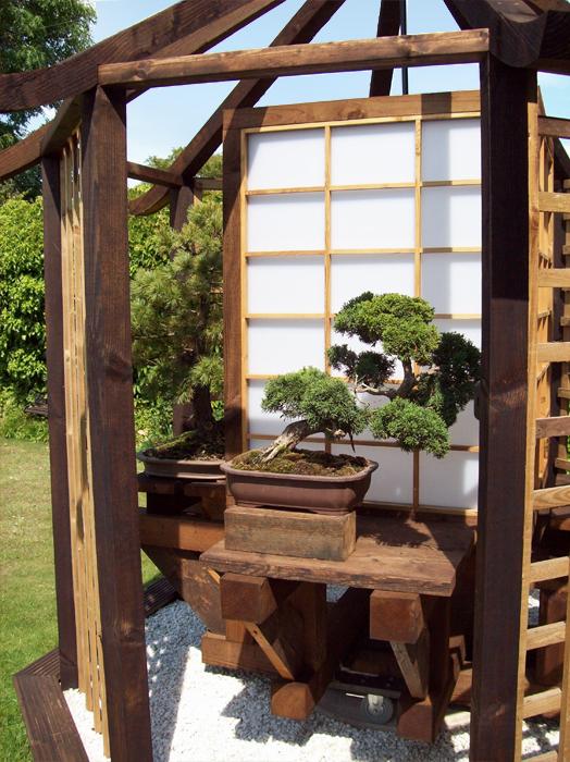 Bonsai Display Stand Table Elegant Rotary Showcase