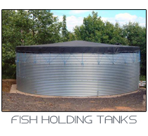 fish holding tank link