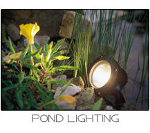 oase pond lighting